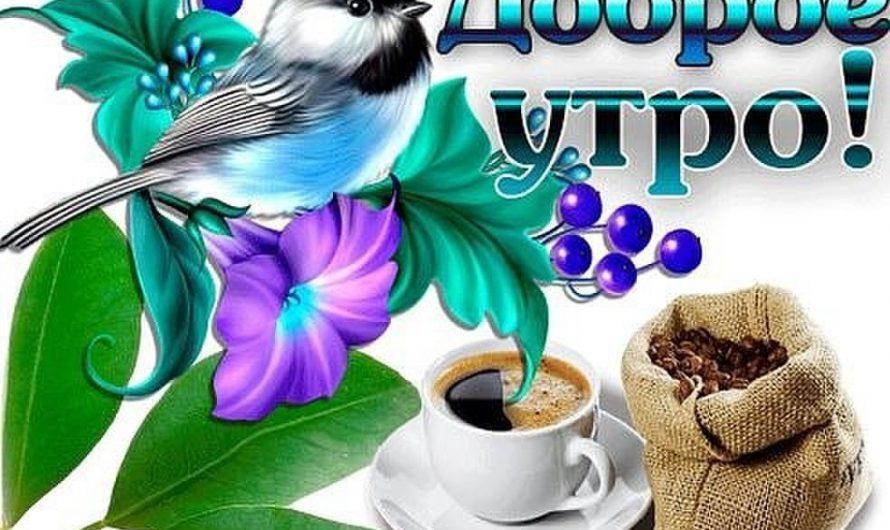 Красивые открытки с пожеланием Доброго утра (Good Morning)!