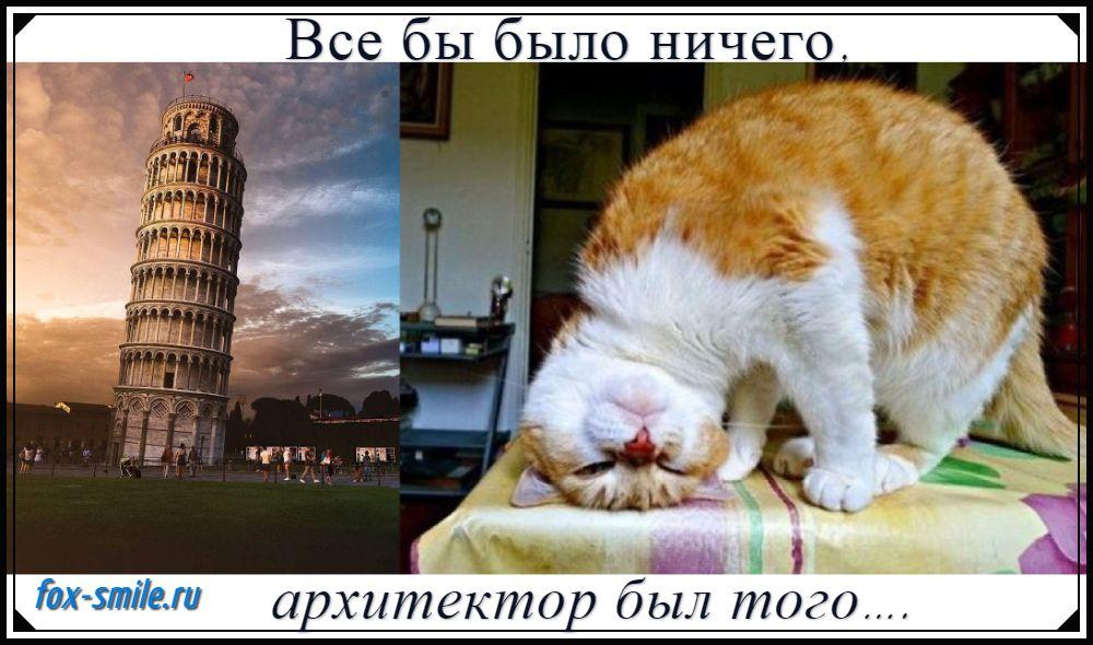 Мем, кот и тайна башни