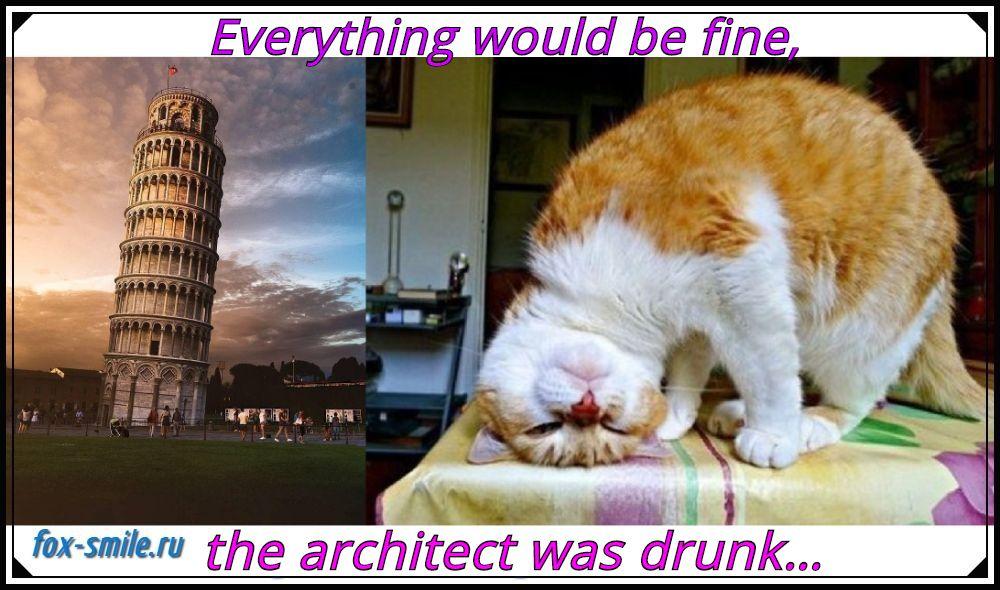 tower of Pisa, cat